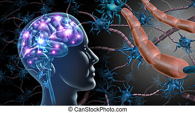 脳, 細胞, 神経