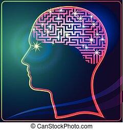 脳, 迷路