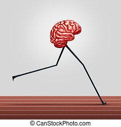 脳, 速い