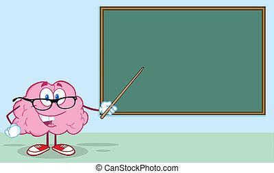 脳, 黒板, 前部