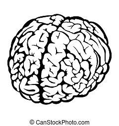 脳, 黒, 人間, 印