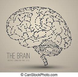 腦子, 摘要
