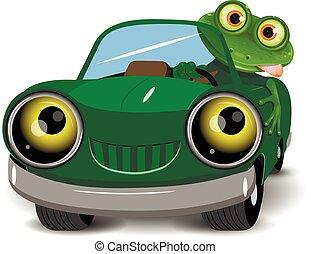自動車, カエル