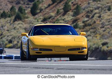 自動車, スポーツ