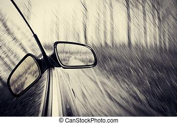 自動車, 森林