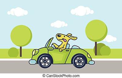 自動車, 犬, 運転