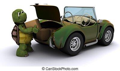 自動車, 箱, ローディング, カメ