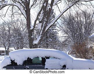 自動車, 雪が覆われる