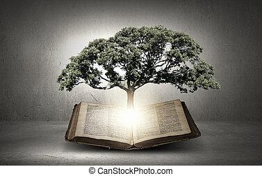 自己, 読書, 教育