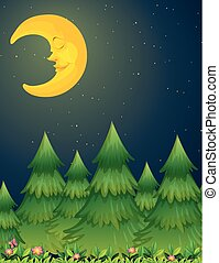 自然場面, 月, 夜