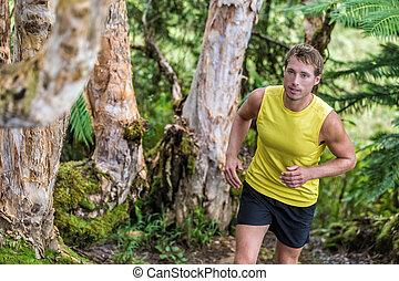 自然, ランナー, 運動選手, 小道ラニング, 森林, 人