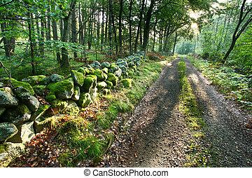 自然, 在, 南方, 瑞典