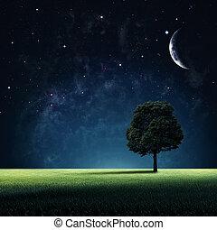 自然, 星が多い, 抽象的, 背景, デザイン, あなたの, night.