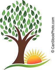 自然, 活気に満ちた, 木, ベクトル, 太陽, ロゴ