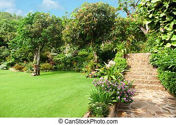 自然, 石头, 地形, 在中, 家庭花园, 带, 楼梯