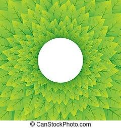 自然, 緑の背景, 円