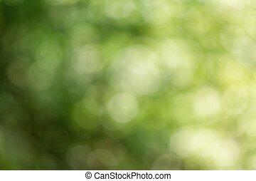 自然, 緑, ぼんやりさせられた, バックグラウンド。