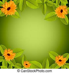 自然, 花, 緑の背景