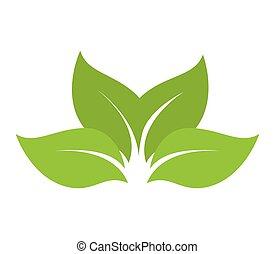 自然, 葉, シートプラント