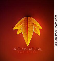 自然, 葉, 秋, ベクトル, 背景, concept.