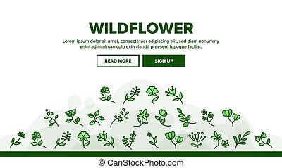自然, 野生の花, 着陸, ベクトル, ヘッダー