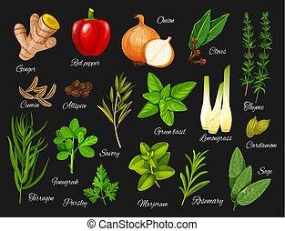 自然, 食物, herbs., 緑, 調味料, スパイス