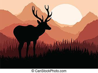 自然, 鹿, イラスト, 雨, 野生, 活気づけられた, 風景