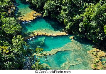 自然, champey, guatemala, semuc, プール, 水泳