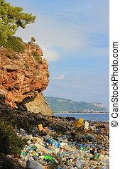 自然, seacoast, 污染