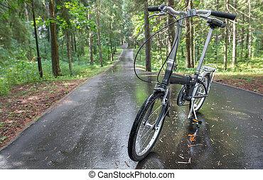 自転車, 中に, ∥, ぬれた, から, ∥, 熱帯雨林, 道