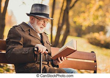 興味を起こさせること, 写真, 残り, 歩くこと, リラックスしなさい, 本, 色, 知識, 公園, 黄色, 秋, ウエア, ジャケット, スティック, 帽子, 帽子, 古い 町, 把握, プロフィール, 中心, 側, 季節, 都市, 人, 座りなさい, ベンチ, 読まれた