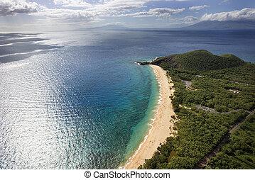 航空写真, の, maui, 浜。