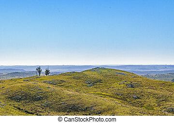 航空写真, ウルグアイ, 田舎, maldonado, 現場, 光景