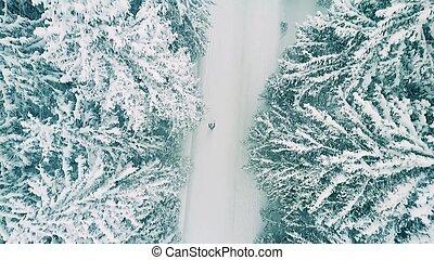 航空写真, ハイキング, 雪, 人, 森林, 打撃