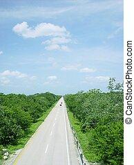 航空写真, メキシコ\, ジャングル, 中央アメリカ, 道, 光景