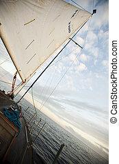 航行, 对于, the, 日出, 夏季, 饱和, 色彩丰富, 主题