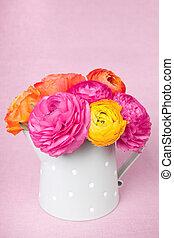 色彩丰富的花, 浇水, 背景, 凸轮, ranunculus, 粉红色, 美丽