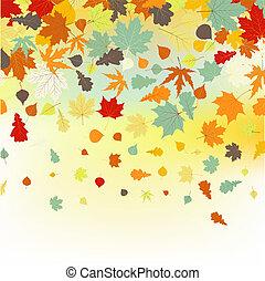 色彩丰富, leaves., eps, 秋季, backround, 8, 落下