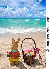 色, イースターエッグ, 海洋, 浜, うさぎ