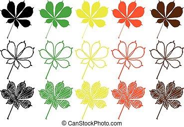 色, セット, 葉, buckeye