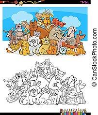 色, ネコ, 本, 犬, 特徴