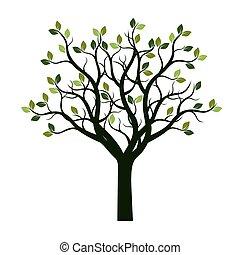 色, ベクトル, 木, illustration., leaves.