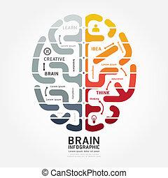 色, 図, 脳, ベクトル, デザイン, infographics, モノクローム, 線