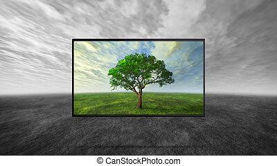 色, 対照, の, tv, ディスプレイ, ∥で∥, 薄暗い, グレーのバックグラウンド