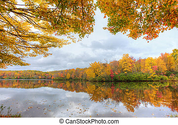 色, 湖, 秋
