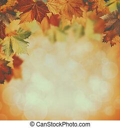 色, 背景, 秋, 美しさ, 薄れていった
