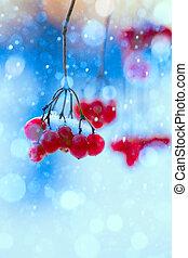 艺术, 冬天性质