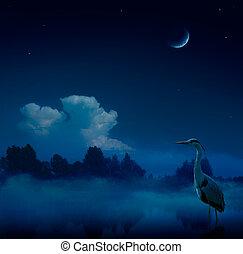 艺术, 幻想, 蓝色, 夜晚, 背景