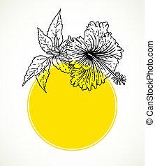 芙蓉屬的植物, frame., 黃色, 矢量, 環繞, 卡片