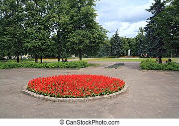 芝生, 中に, 町, 公園